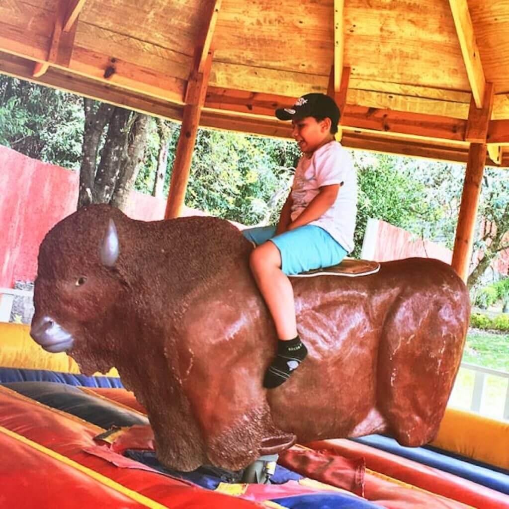 Actividades rancho aventura